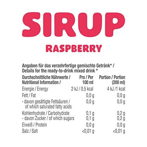 GOT7 Sugar Free Sirup Getränkesirup (6er 750ml) - 3