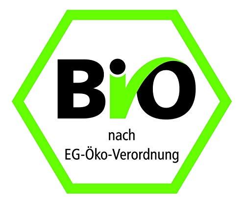 Erdschwalbe BIO Reisprotein 1kg-Beutel – 82% Proteingehalt - 2